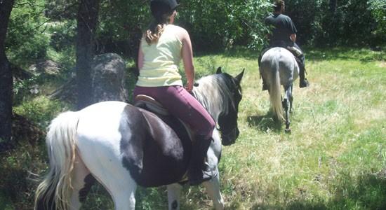 Equitacion y Hipicas en la Cerdanya – Paseos a caballo